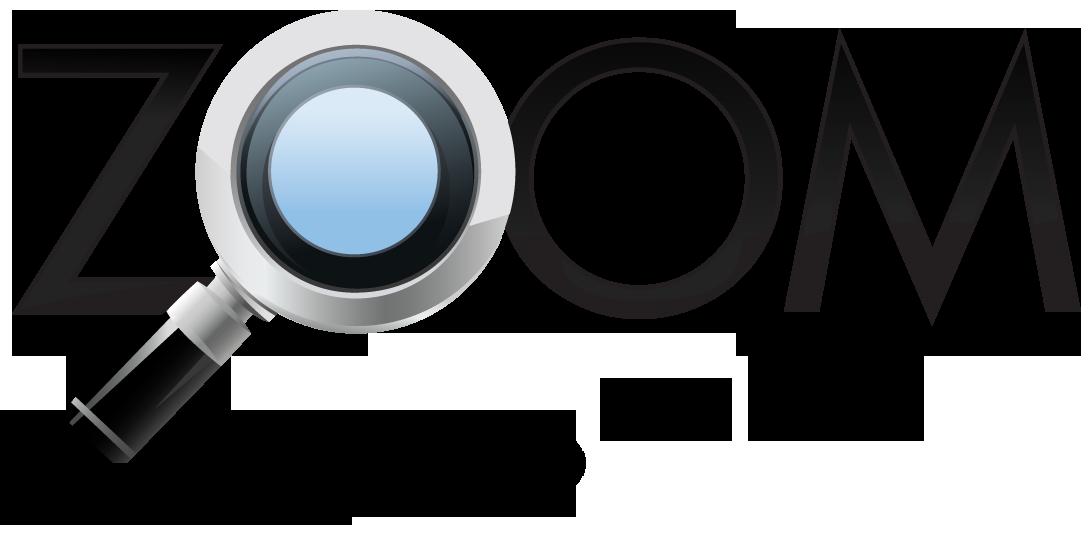 Zoom Audits